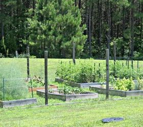 How To Plan A Raised Bed Vegetable Garden, Gardening, How To, Raised Garden