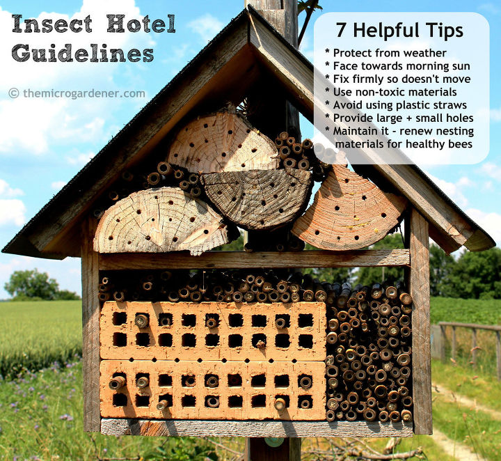 Tips to attract bee 'guests' to your 'hotel'!