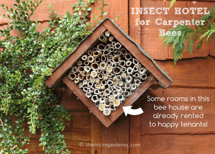 Bee houses can be decorative garden art too!