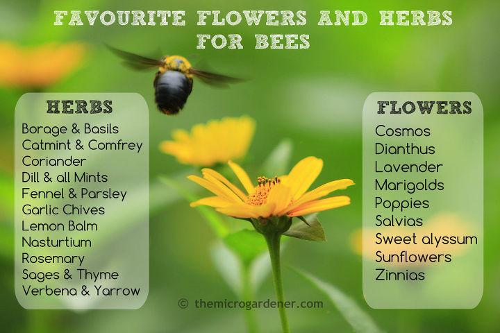 Nectar + pollen rich Flower List for bees