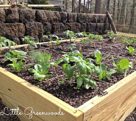 Merveilleux Build Your Own Diy Container Garden, Container Gardening, Diy, Gardening,  How To