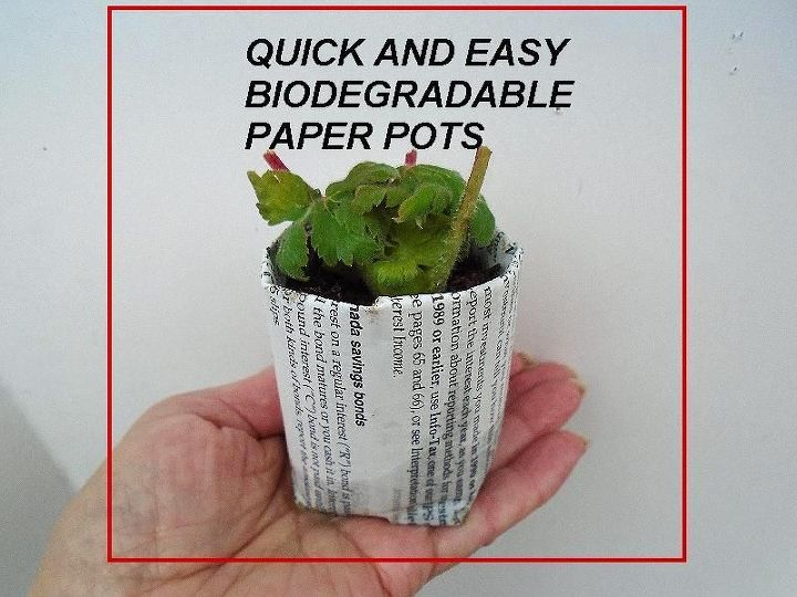 best easy diy biodegradable pots for seedlings or cuttings, container gardening, gardening, go green, how to, repurposing upcycling