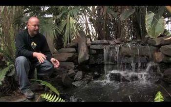 Designing Water Gardens Tips & Tricks