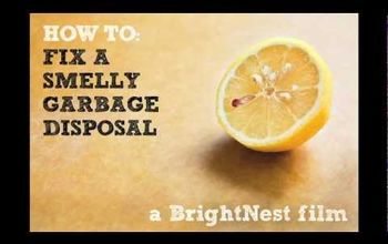 [Video] How to Fix a Smelly Garbage Disposal