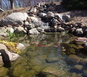 Backyard Fish Pond And Waterfall, Landscape, Ponds Water Features  Cepontzsons