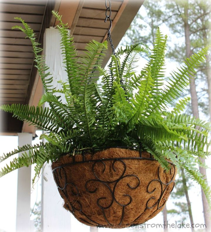 save by making your own hanging baskets, container gardening, gardening