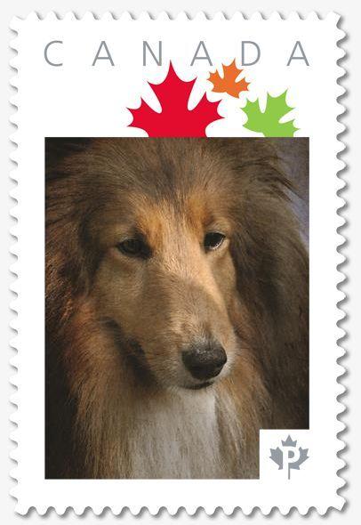 make your own custom postage stamp hometalk