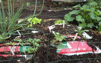 No-Hoe Plastic Bag Garden