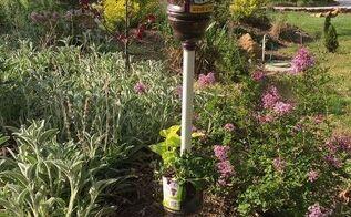 plastic bottle planter, container gardening, gardening, repurposing upcycling