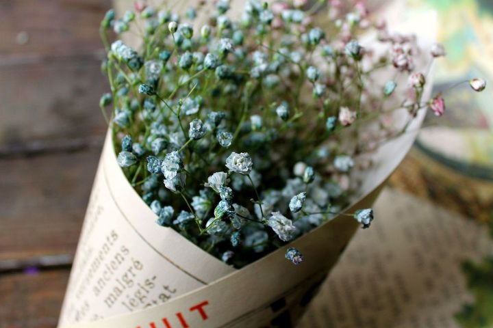 how to naturally dye baby s breath diy, crafts, flowers, gardening, home decor, how to