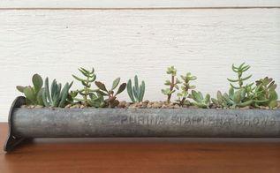 antique chicken feeder succulent garden, container gardening, gardening, home decor, repurposing upcycling, succulents