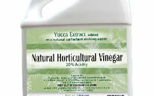 how to use vinegar to kill weeds a more natural approach, gardening, how to, repurposing upcycling, Stronger Horticultural Vinegar