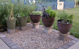 growing kitchen herb in containers, container gardening, gardening, homesteading