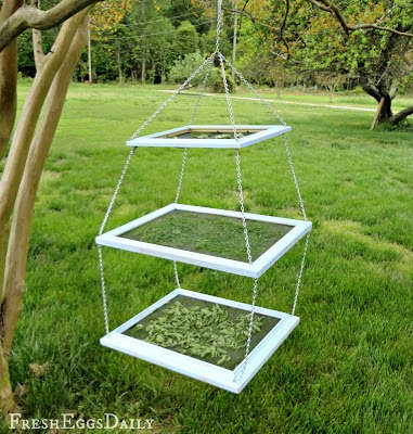 turn old picture frames into an herb drying rack, repurposing upcycling