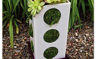 diy vertical relaxation garden succulent container, container gardening, gardening, home decor, succulents