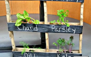 A Inexpensive Herb and Flower Garden in a Pallet