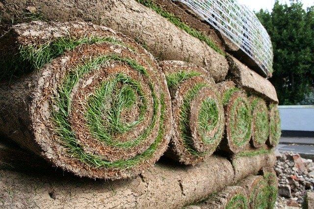 Cost To Resod A Lawn Hometalk