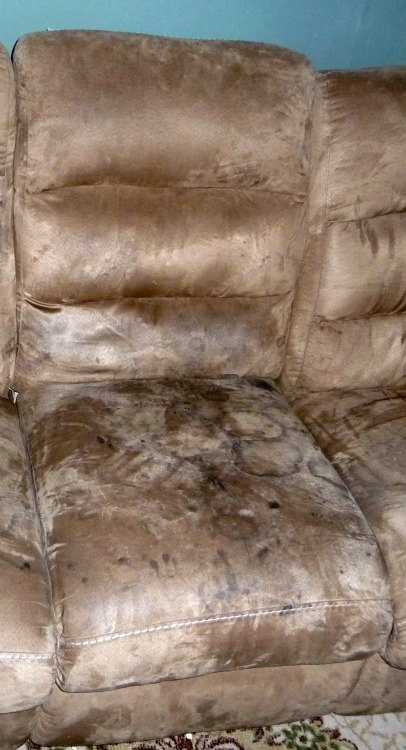 Pleasing Cleaning A Microfiber Couch The Environmentally Friendly Way Short Links Chair Design For Home Short Linksinfo