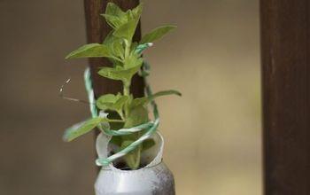 reusing plastic bottles in the garden, crafts, gardening, repurposing upcycling