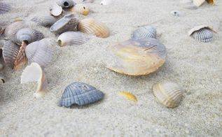 repurposed seashells ideas, crafts, gardening, how to, repurposing upcycling