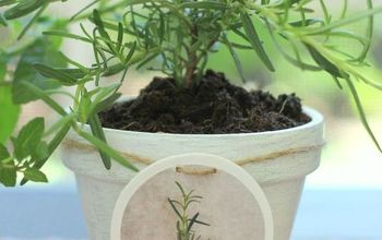 DIY Hang Tags and Painted Clay Pots for Herbs