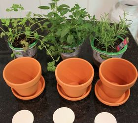 Delightful Diy Hang Tags And Painted Clay Pots For Herbs, Container Gardening, Crafts,  Gardening
