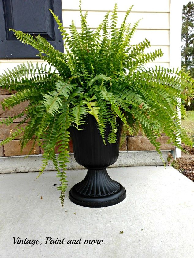 painted container for fern, chalkboard paint, container gardening, crafts