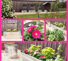 Creating A Raised Herb Garden From Water Troughs, Container Gardening,  Gardening, Raised Garden