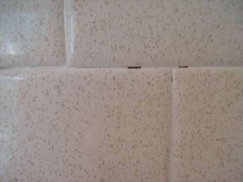 My 70s Bathroom Has These Holes Between The Tiles Hometalk