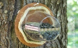 make birdfeeders from cd dvds plastic cups, crafts, how to, outdoor living, pets animals, repurposing upcycling