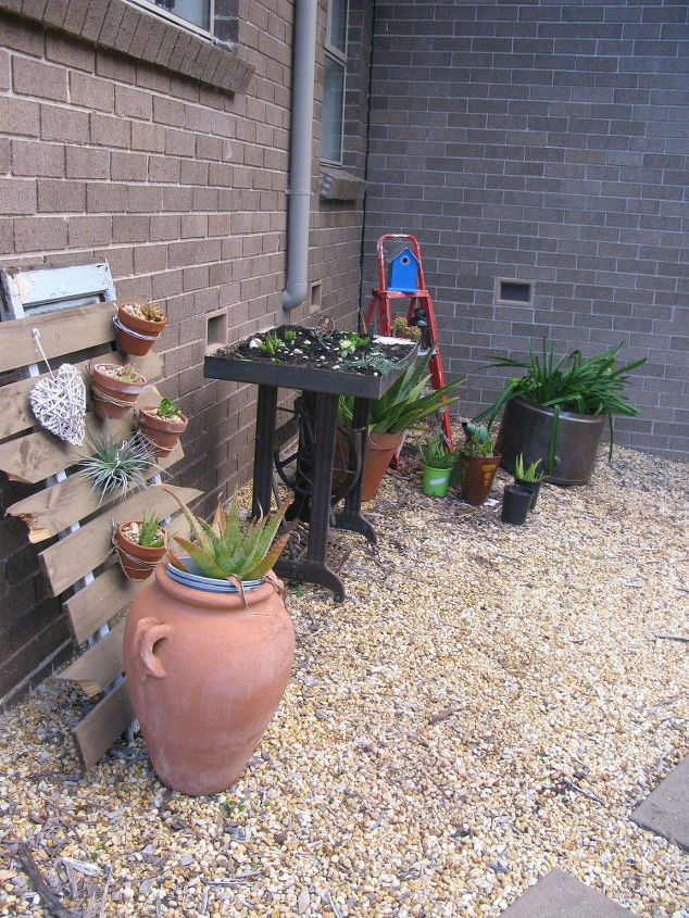 succulent singer treadle makeover, flowers, gardening, repurposing upcycling, succulents