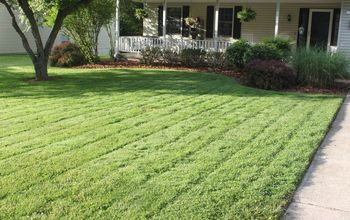 Diy Organic Garden Insect Spray That Works Hometalk