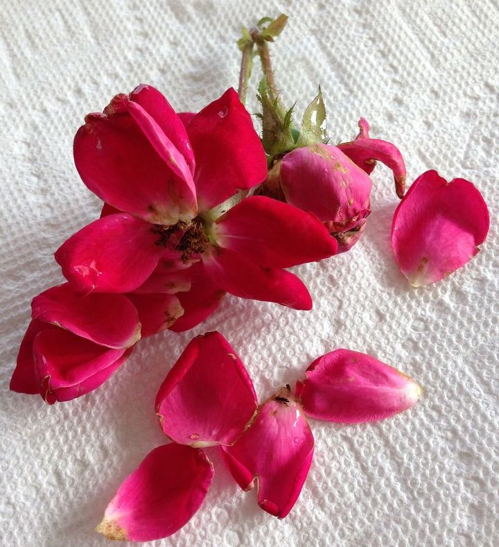 homemade rose petal sachets using paper towel tube, crafts, flowers, how to, repurposing upcycling