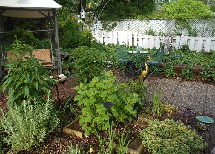 transforming my backyard into a secret garden, flowers, gardening, landscape, outdoor living, perennial