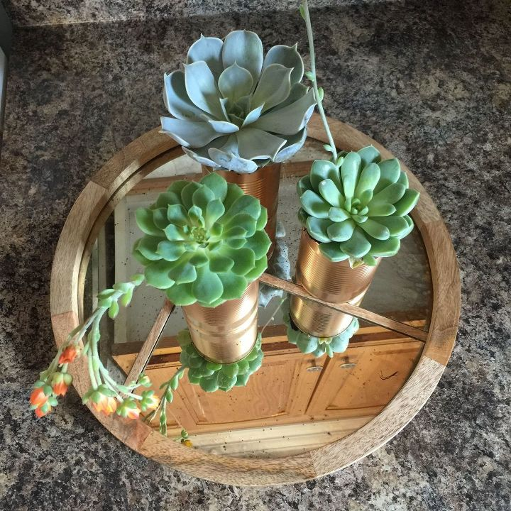 diy tin can planters succulents, container gardening, crafts, flowers, gardening, how to, repurposing upcycling, succulents