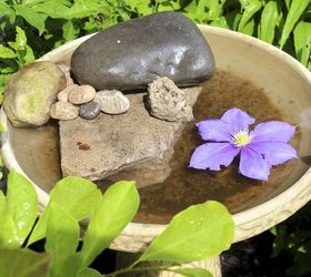 Attracting Butterflies To Your Garden With A Butterfly Bath, Gardening,  Outdoor Living, Pets