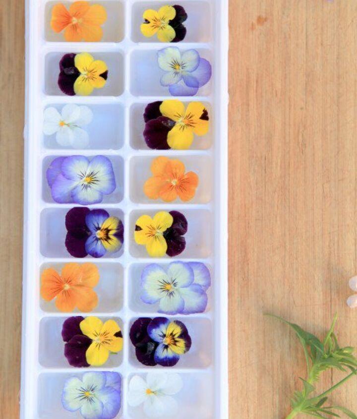 floral ice cubes elegant entertaining, flowers, gardening, repurposing upcycling