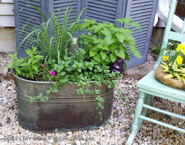 natural mosquito repelling planters, container gardening, gardening, pest control