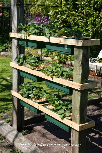 diy strawberry or herb planter with measurements, container gardening, gardening, how to, woodworking projects