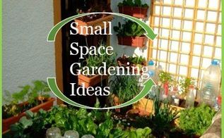 small space gardening ideas for urban gardeners, container gardening, gardening, homesteading, urban living