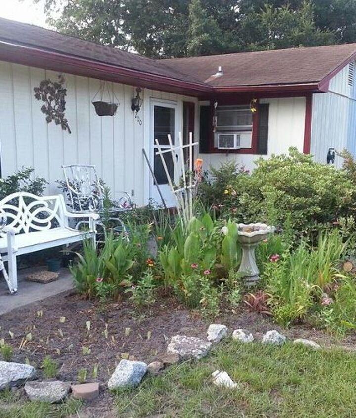 extended garden bed, flowers, gardening, hibiscus