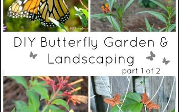 diy landscaping and butterfly garden, diy, gardening, landscape