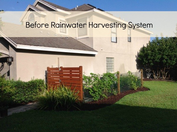 rainwater harvesting system, container gardening, gardening, go green, raised garden beds