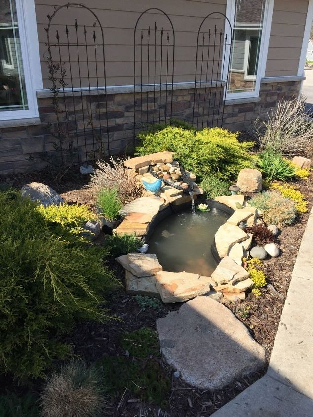 Small garden pond paradise hometalk for Garden table fish pond