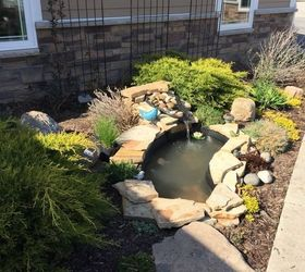Superb Small Garden Pond Paradise, Diy, Gardening, Ponds Water Features