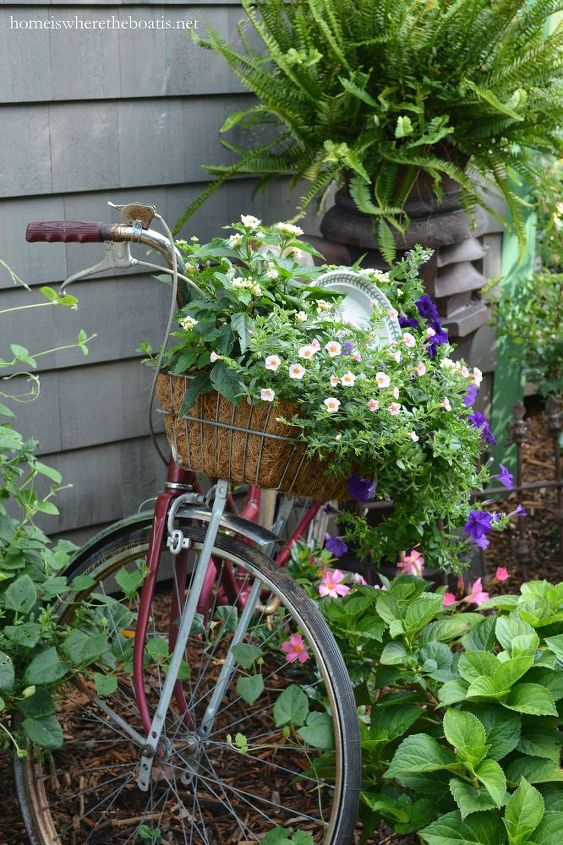 gardening on wheels a bicycle planter, container gardening, gardening, repurposing upcycling