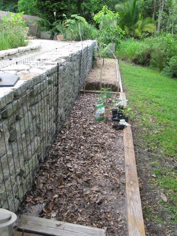 Backyard Ideas For Gabion Walls