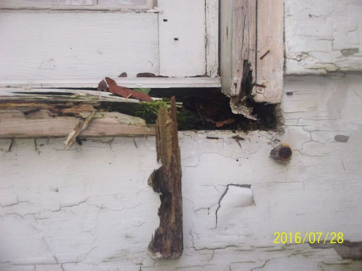 Outer boards of some windows are rotted out as well. Can see bugs crawling in and out.