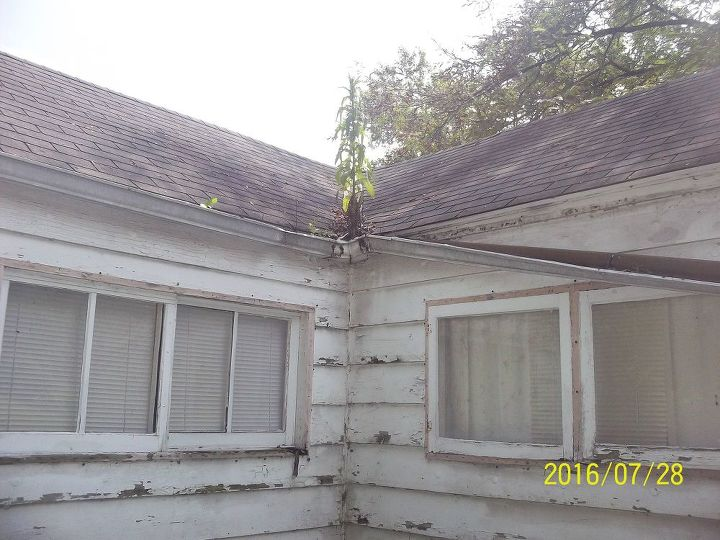 Gutters all around the house are fallen, or simply missing. This one should be easy enough to fix?