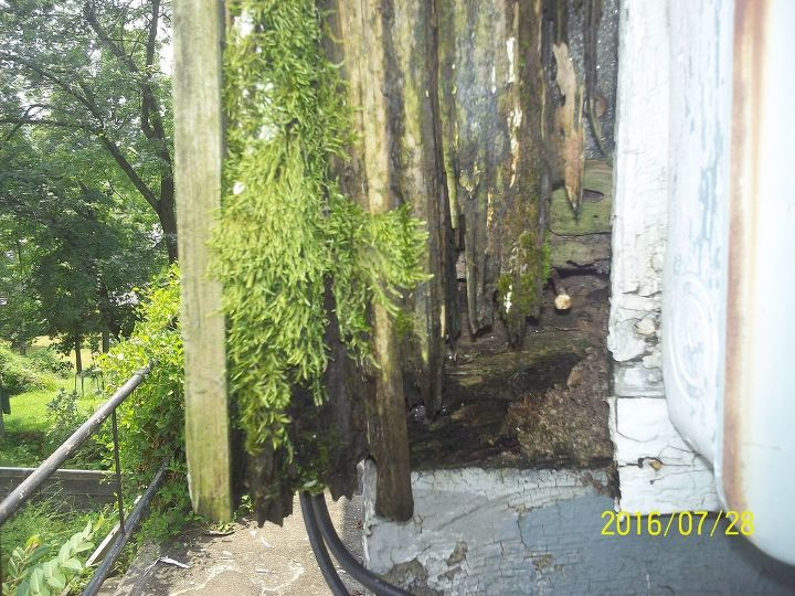 As before there is no gutter directing the water into the ground, so water just flows down the house, causing more damage to the boards and moss growth.